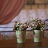 Rosa Canina Antico Casale Pelagalli (3)